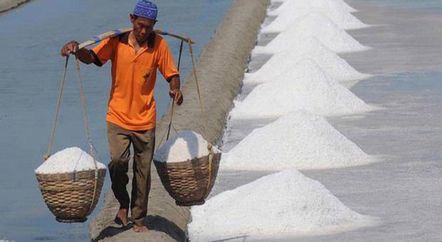Buruh angkut garam, mengangkut garam dari tambah garam menuju lokasi penampungan atau gudang garam.