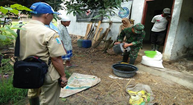 Babinsa Desa Ceguk Serda Umarul Faruk mendampingi pembuatan pupuk bhokasi, Senin (20/2/2017)
