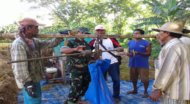 Babinsa Majungan Melakukan Ubinan di Desa Majungan, Pademawu, Pamekasan, Madura.